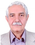 Professor. Nasser Foroghi Far